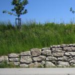 Mauersteine Petersberg XL, Nagelfluh