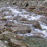 Wasserbausteine Traun IV